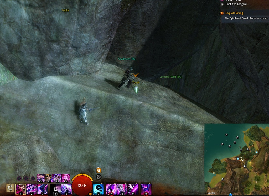 gw2-hunt-the-dragon-sparkfly-fen-clues-10