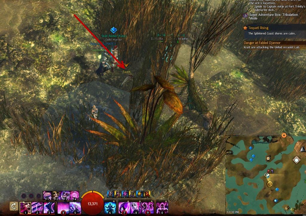 gw2-hunt-the-dragon-sparkfly-fen-clues