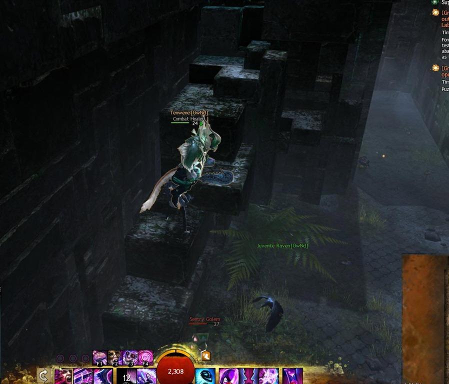 gw2-proxemics-lab-guild-puzzle-15